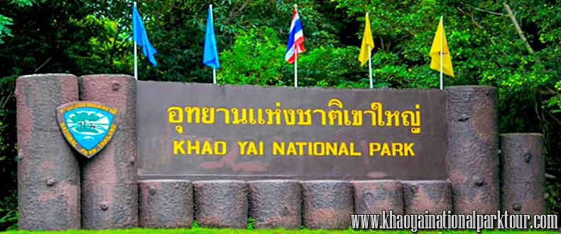 Welcome to Khao Yai National World heritage,declared by UNESCO,Khao Yai Tour from Bangkok Thailand