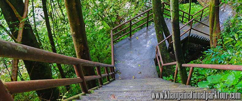 Way to Khaoyai National Park, Khao Yai Trekking Tour