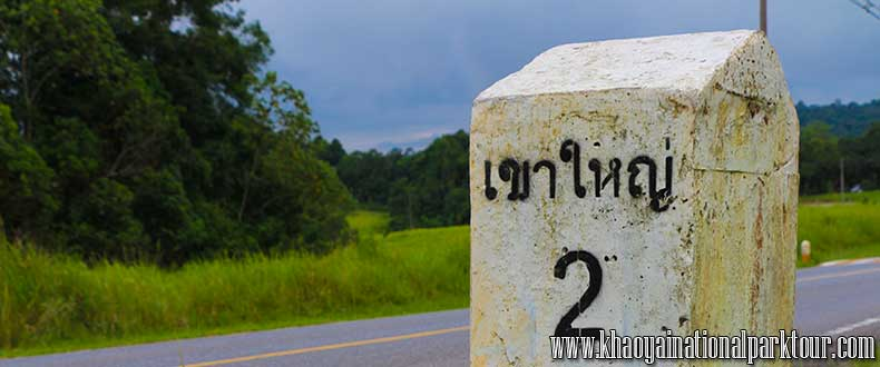 How to go to Khao yai national park from Bangkok?