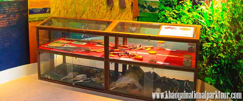 Khao Yai National Park Visitor Center